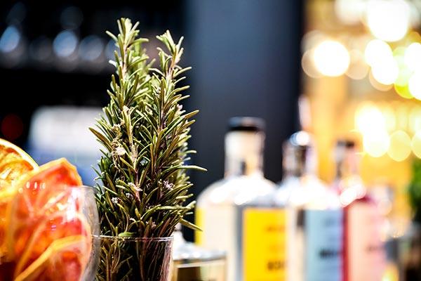 gin bottles botanicals and orange slices